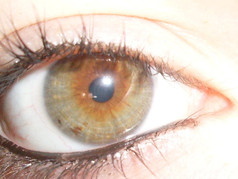 Joueb de muche les yeux marrons verts - Yeux vert noisette ...