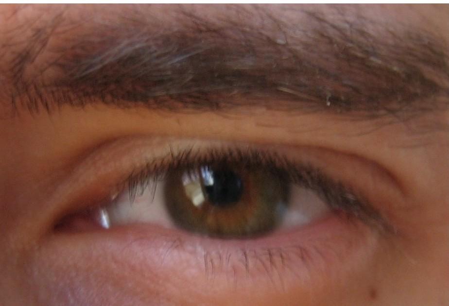 Joueb de muche les yeux marrons verts - Yeux vert marron ...